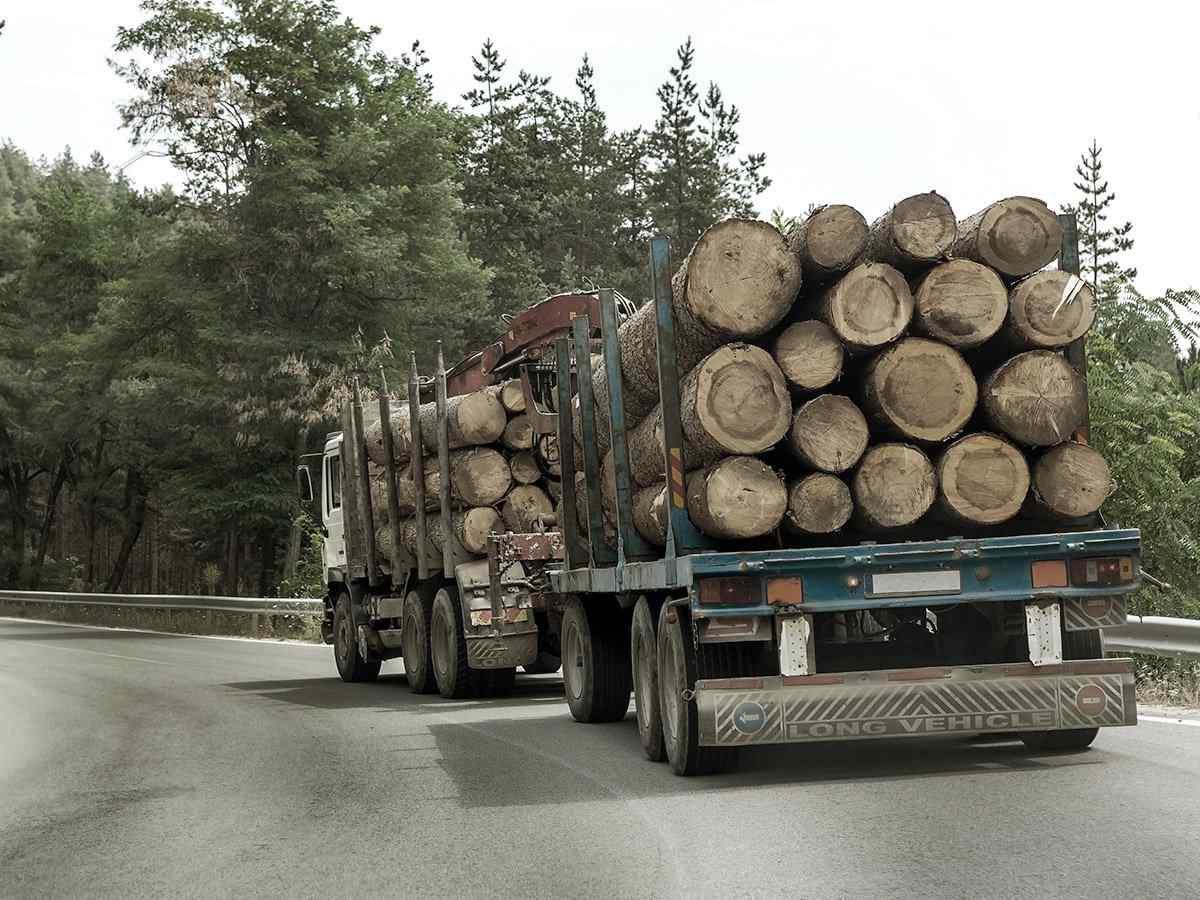 http://www.transporteinternacionalalmansa.es/wp-content/uploads/2017/08/inner_big_trucks_01.jpg