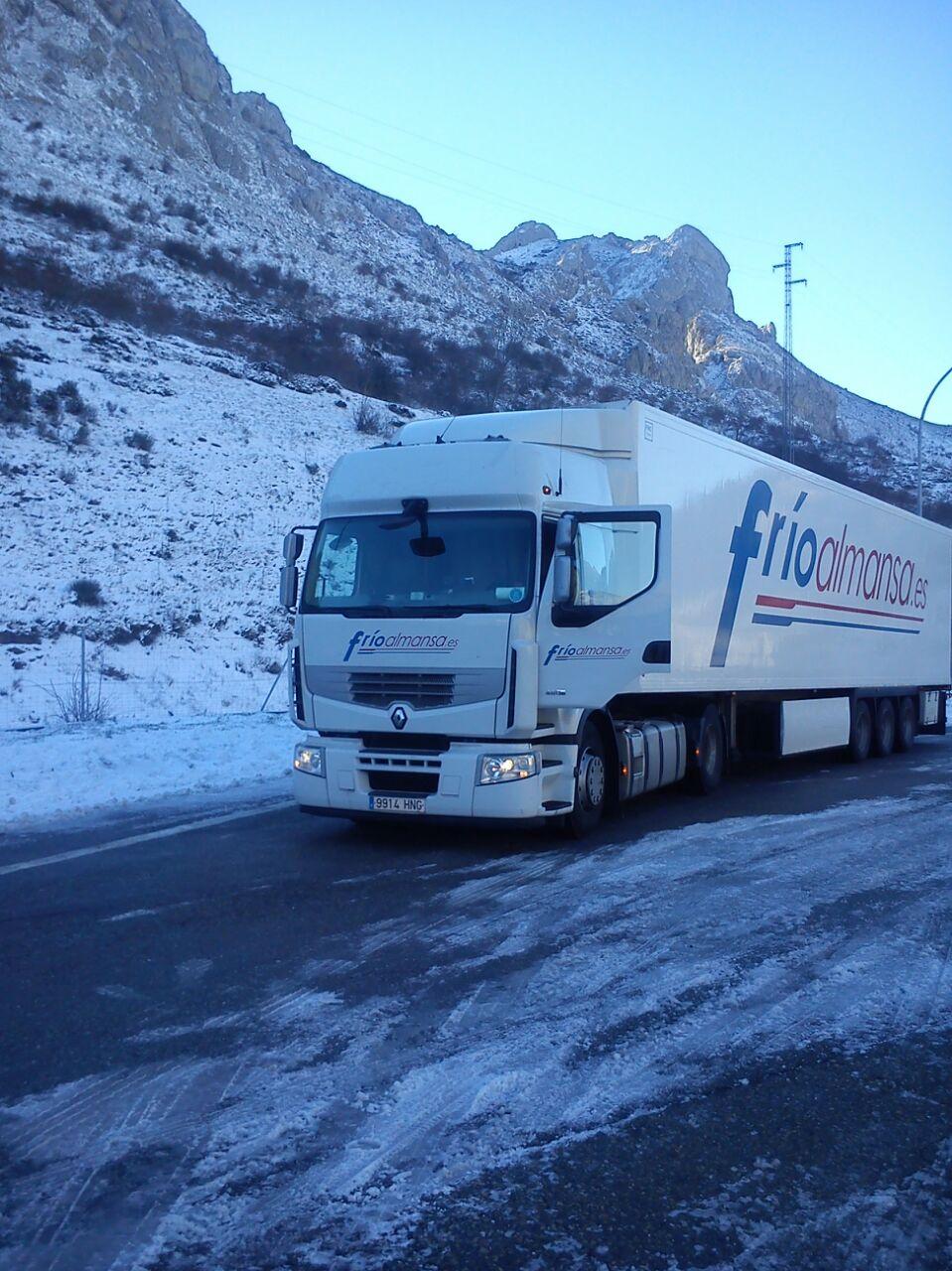 transportes internacionales frio almansa transporte por carretera de mercancía congelada en grupaje8